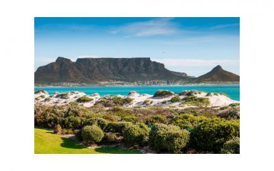 CBD oil Cape Town